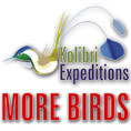kolibri Expeditions