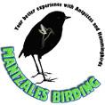 manizales birding