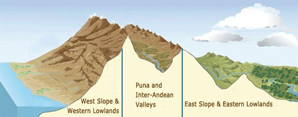bird regions of Peru