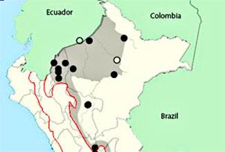 birds of peru map