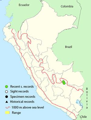 sayaca_tanager-map