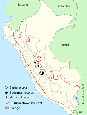Jalca tapaculo map